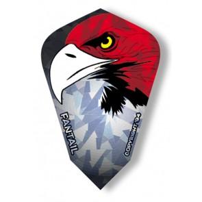 Harrows Fantail Eagle kite Flights